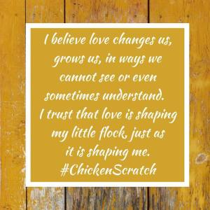 chicken-quote