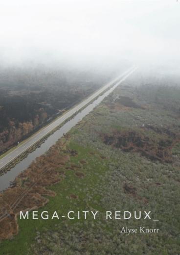 Mega-City